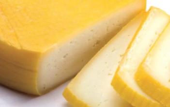Universidade de Évora vai dar a provar queijo