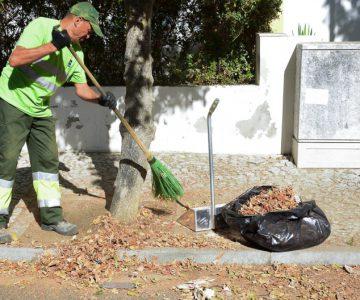 Emprego: Apenas o Algarve fica à frente do Alentejo no aumento de ofertas de emprego
