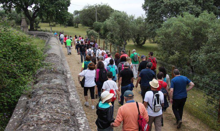 Évora: Caminhada das Ervas com uma centena de participantes