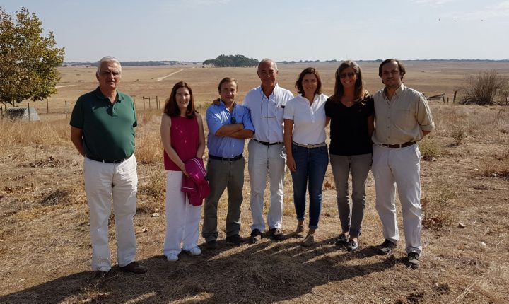 Évora: Líder do CDS-PP visita agricultor em dificuldades devido à seca
