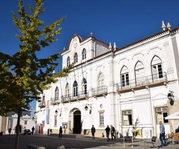 Câmara de Évora volta a promover concurso Árvores de Natal Recicladas