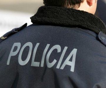 PSP retirou animais de um acampamento em Évora
