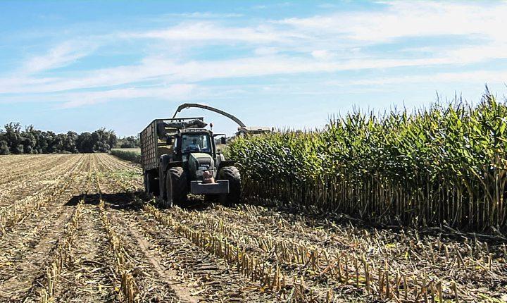 Federação dos agricultores reclama medidas de combate à seca
