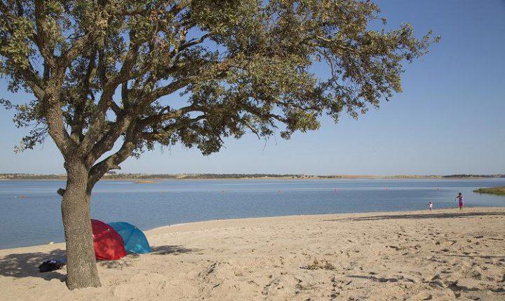 Praia fluvial de Monsaraz recebe ação de limpeza terrestre