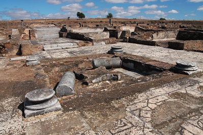 Évora: Universidade já tem parceiros para salvaguarda da Villa Romana de Pisões