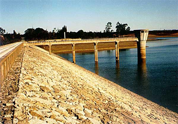 Alentejo: 150 toneladas de peixes retiradas de quatro barragens