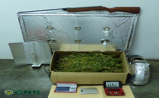 Sousel: Três detidos por tráfico de droga