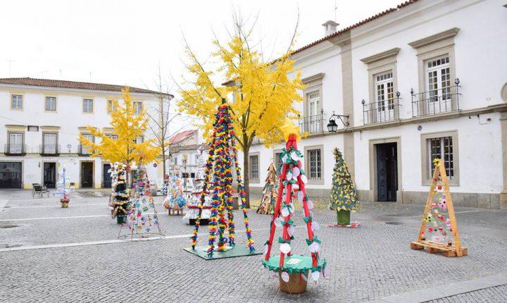 Évora: Árvores de Natal recicladas na Praça do Sertório
