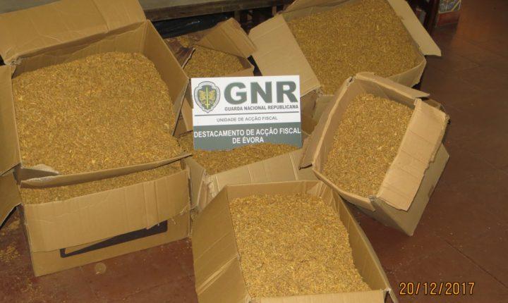 Elvas: GNR apreende mais de 90 quilos de tabaco