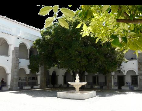 Aluna de Évora conquista prata nas Olimpíadas de Matemática