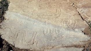 Gravuras rupestres do Guadiana em estudo e certificação