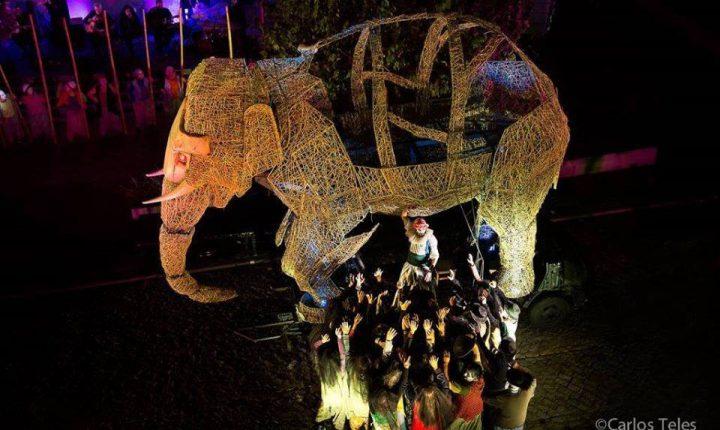 """""""A Viagem do Elefante"""" no Jardim Público de Évora"""