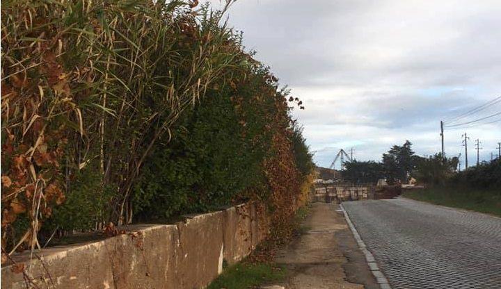 Acidente: Campo do Borbense reservado para o INEM (c/som)