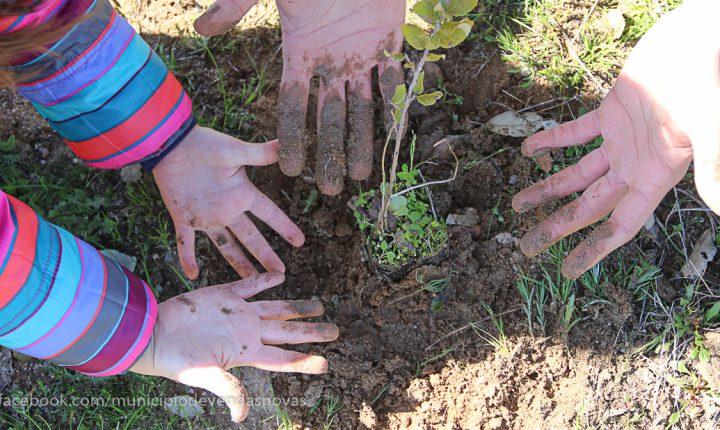 Crianças de Vendas Novas plantam 750 sobreiros