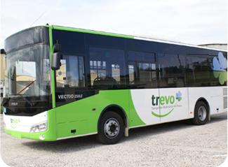 Transportes urbanos em Évora ainda não foram repostos na totalidade