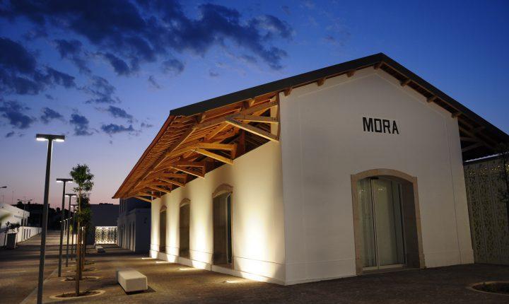Museu do Megalitismo de Mora expõe pintura