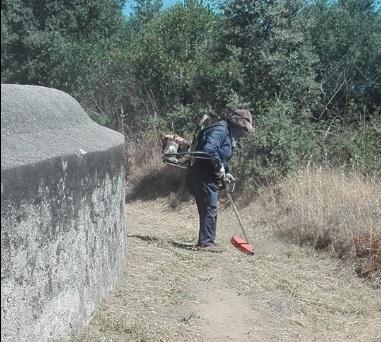 Câmara de Évora procede a limpeza da envolvente ao aqueduto