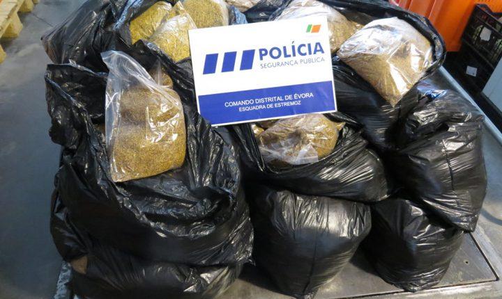 PSP deteve homem por transporte de tabaco ilegal em Estremoz