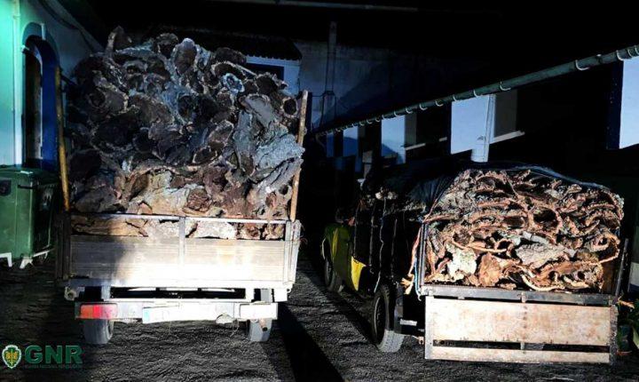 Quatro detidos por furto de mais de uma tonelada cortiça em Grândola