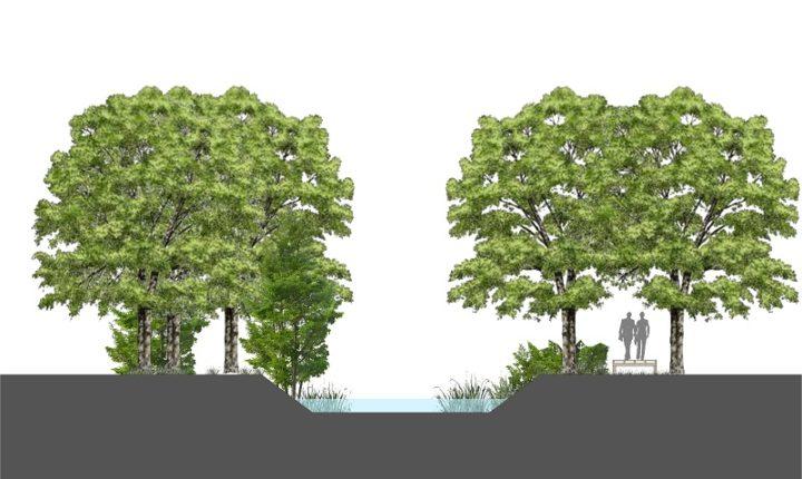 Vão ser plantadas 1.200 árvores na Ribeira de Vide em Arraiolos