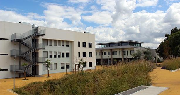 CDS-PP denuncia falta de condições em escola de Montemor-o-Novo