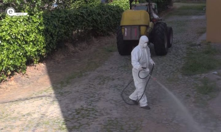 Desinfeção de espaços públicos arranca hoje em Évora