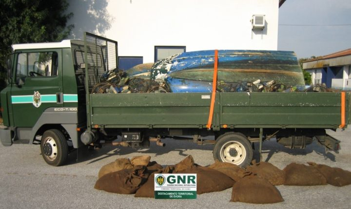 GNR apreende 330 quilos de lagostins em Portel