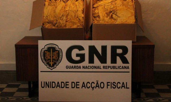 GNR apreende 40 quilos de folha de tabaco em Évora