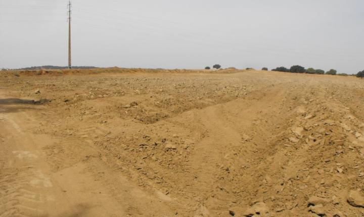 Direção regional faz queixa-crime pela destruição de sítios arqueológicos em Évora