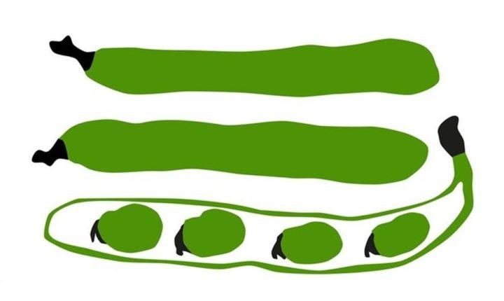 Mercadinho de Produtores Locais Eborenses volta à Comunidade Escolar