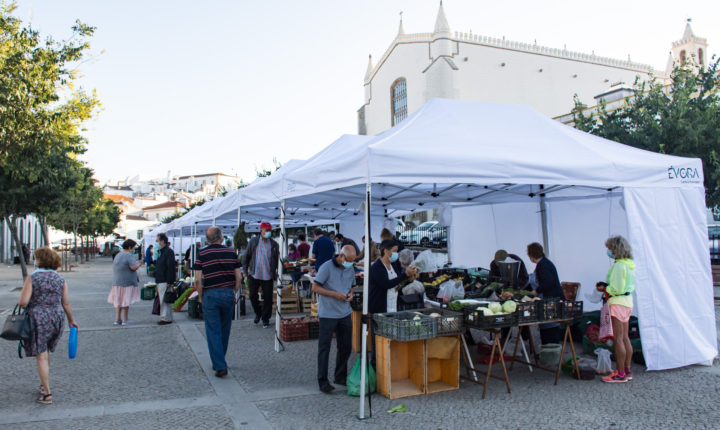 Mercado de produtores de Évora conta com novas bancas e tendas de sombra