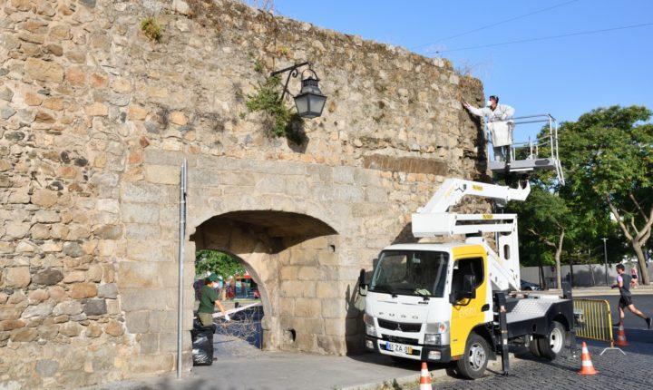 Câmara de Évora procede à limpeza e tratamento das muralhas