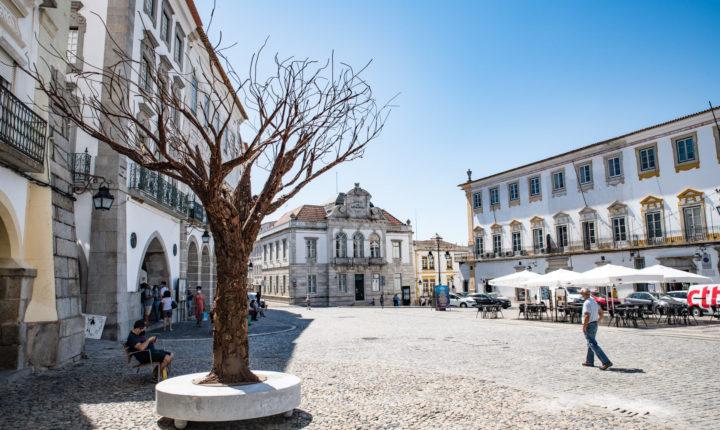 """Escultura de grandes dimensões """"plantada"""" na Praça do Giraldo"""